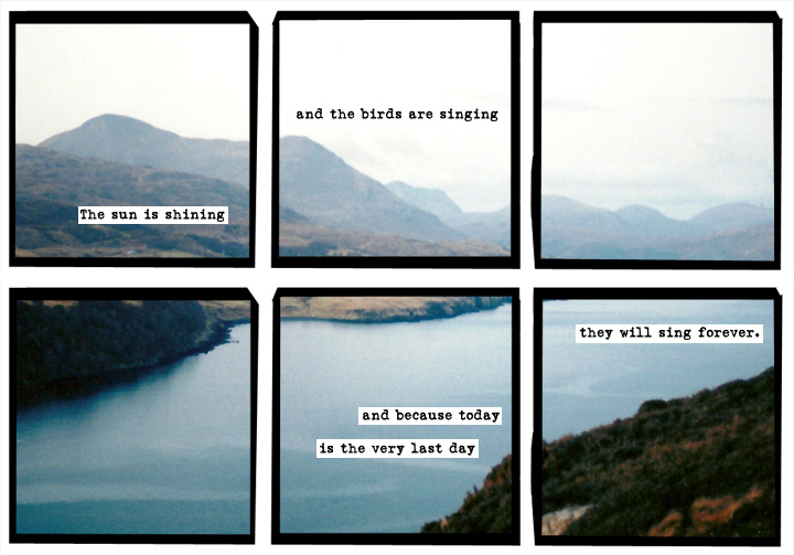 A última tira do A Softer World